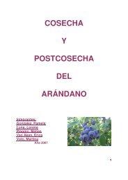COSECHA Y POSTCOSECHA DEL ARÁNDANO - Emagister