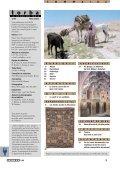 Reportage: Les kordis, kurdes du Khorassan - König Tapis - Page 3