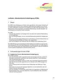 Leitfaden «Standardisierte Erstbefragung STEB - Amt für Soziales ...