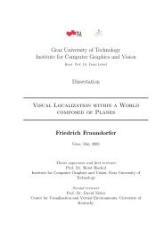 PHD Thesis - Institute for Computer Graphics and Vision - Graz ...