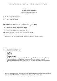 Beschreibungen der Soziologie-Module