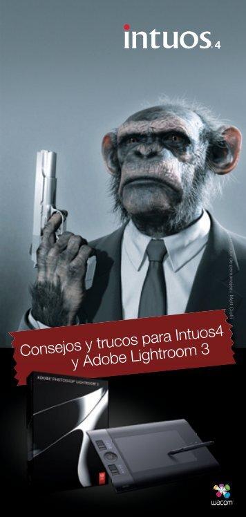 Consejos y trucos para Intuos4 y Adobe Lightroom 3 - Arqui.com