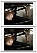 Tierschutz - Wissenschaftliche Grundlagen zu einem emotionalen ... - Seite 2