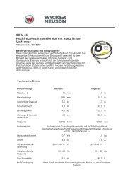 IRFU 45 Hochfrequenz-Innenvibrator mit integriertem Umformer
