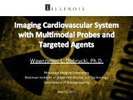 Imaging the Cardiovascular System with Multimodal Probes and ...