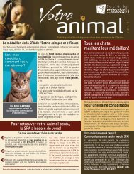 Votre Animal 2013 - SPA Estrie
