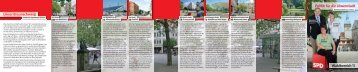 Flyer Wahlbereich 11 - SPD Unterbezirk Braunschweig