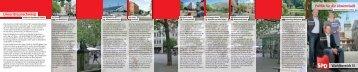 Flyer Wahlbereich 31 - SPD Unterbezirk Braunschweig