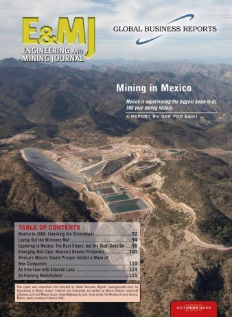 Mining in Mexico 2008 - GBR