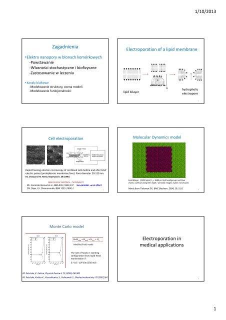Zagadnienia Electroporation in medical applications
