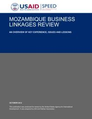 Mozambique Linkages Review - CTA