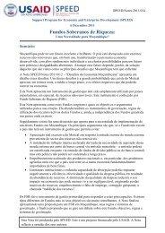 Fundos Soberanos de Riqueza - Support Program for Economic and ...