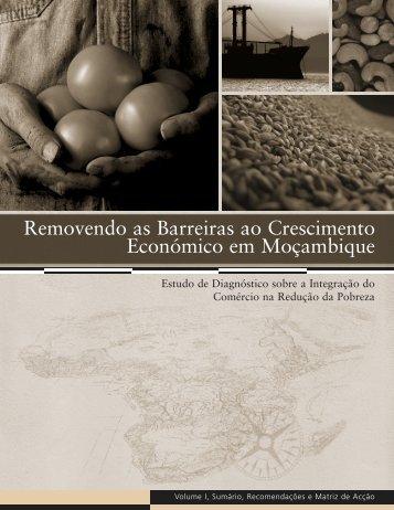 Removendo as Barreiras ao Crescimento Económico em ... - tipmoz