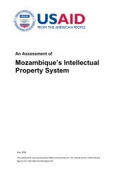 An Assessment of Mozambique's Intellectual Property System - tipmoz