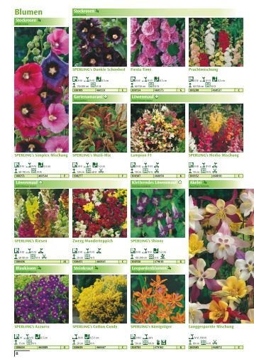 Blumen - Sperli