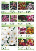 Blumen - Sperli - Seite 4
