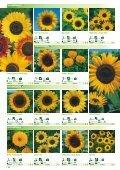 Blumen - Sperli - Seite 7