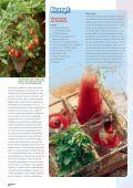 Tomate! - Sperli - Seite 4