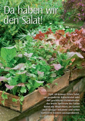 Da haben wir den Salat! - Sperli