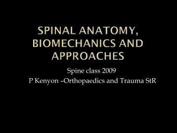 Anatomy, Biomechanics & Approaches