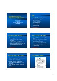 Biomechanical Aspects of Intervertebral Disk Degeneration