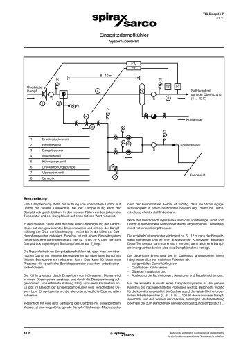 Einspritzdampfkühler, Systemübersicht - Spirax Sarco