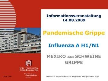 Was heisst Influenza A H1/N1 - Spital Oberengadin