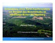 Entwicklung eines Karst-Aquifersystems am Beispiel des ...