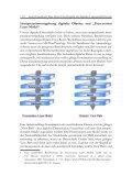 Hardware - nestor - Seite 4