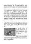 Empfindungen und Gedanken - Hundeausbildung Boeker - Seite 3