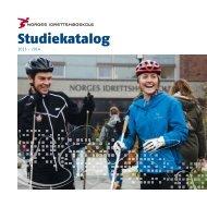 Studiekatalogen 2013-14.pdf - Norges idrettshøgskole
