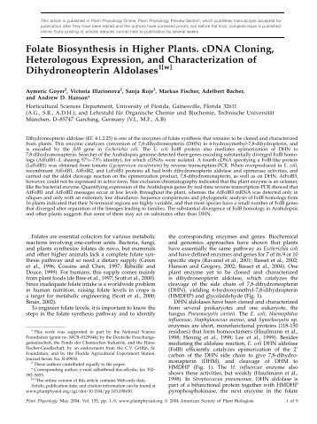 Folate Biosynthesis in Higher Plants. cDNA ... - Plant Physiology