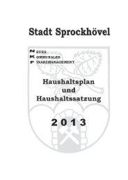 Haushaltsplan der Stadt Sprockhövel 2013 Inhaltsverzeichnis
