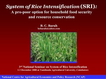 System of Rice Intensification (SRI): - SRI - India