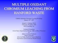Alternative Oxidation Leaching Studies