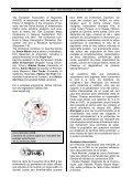 Schweizerische Amerikanisten-Gesellschaft Newsletter # 4 - Page 6