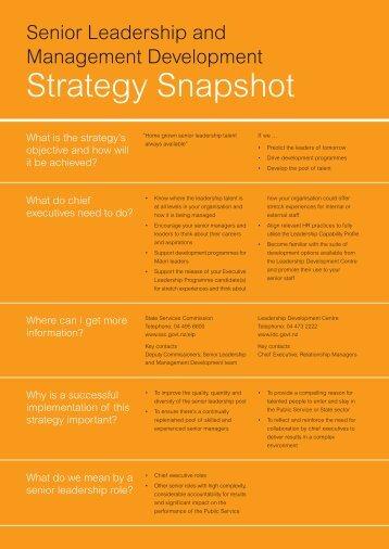 Strategy Snapshot - State Services Commission