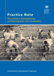 UNDP Practice Note. Disarmament, Demobilization and ... - SSDDRC
