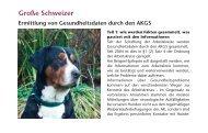 Große Schweizer Sennenhunde , Ermittlung von ... - SSV