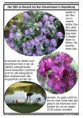 Ausgabe 06.2012 - SSV Jersbek - Page 7