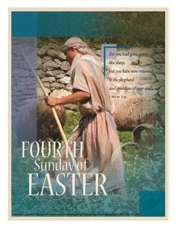 Download - St. Monica's Parish
