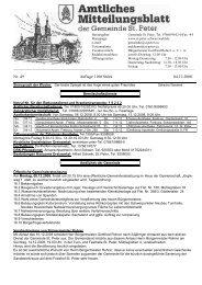 Nr. 49 Auflage 1100 Stück 04.12.2008 - St. Peter