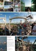 Chronologie der Renovierung - St. Stephan Breisach - Seite 7