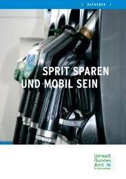 Broschüre zum spritsparenden Autofahren - Lippstadt