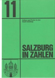 TEIL 3 - Stadt Salzburg