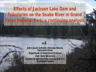 Effects of Jackson Lake Dam and Tributaries on the Snake River in ...