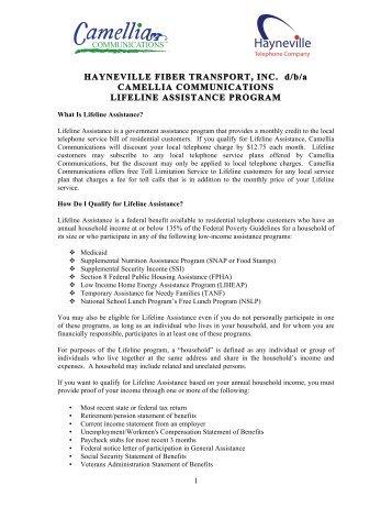 application for verizon lifeline service pennsylvania