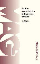 Etniske minoriteters indflydelseskanaler