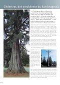 Cedertræ brochure, 32 sider 2MB - Moelven - Page 2