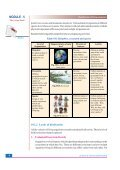19. Classification of Living Organisms - Page 4